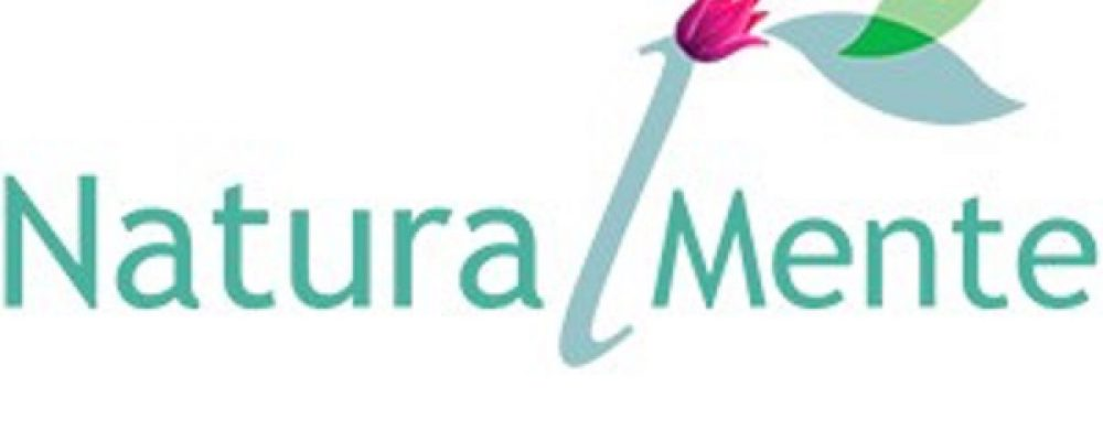 Logo-notas1